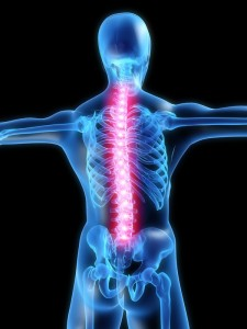 If you have back pain problems, have a chat with David Fraser about how our multidisciplinary approach can give you more effective relief from your pain.